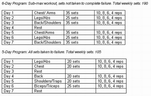 Size Workout Program Muscle Building