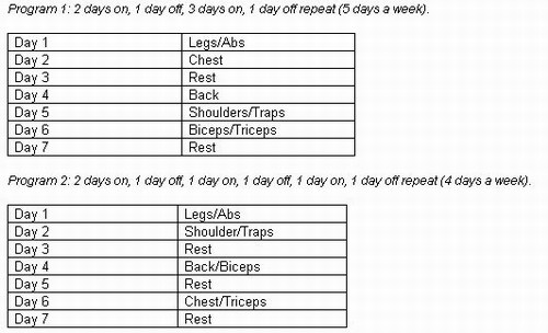 Day Split Muscle Building Workout